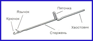 Yazychkovaya_igla